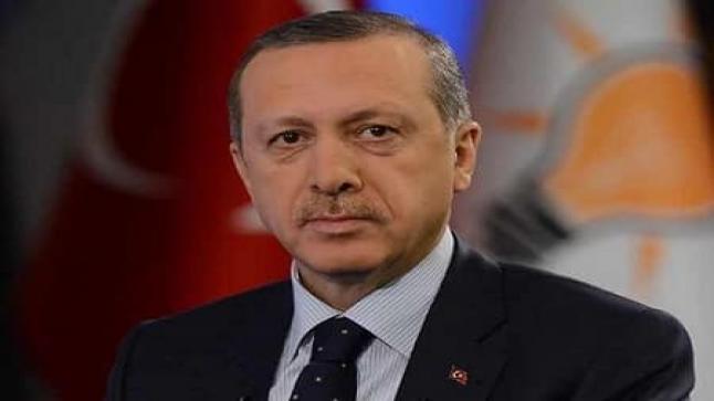 أردوغان : رفع حالة الطوارئ في تركيا مرتبط بالوصول إلى نتيجة ملموسة